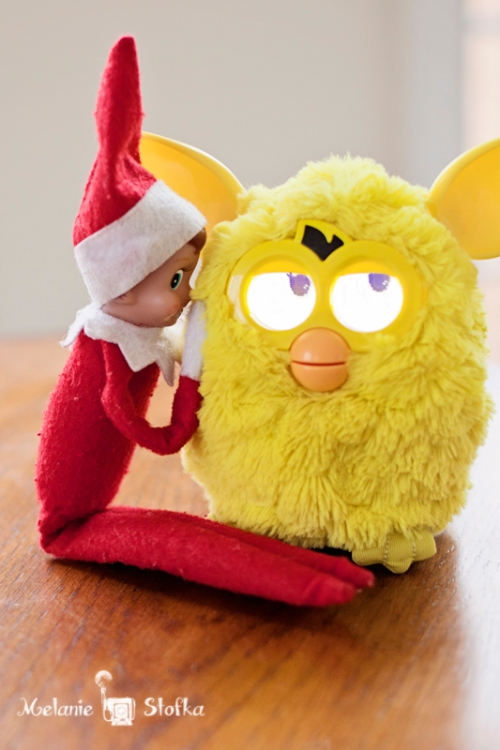 Elf on the Shelf + Furby = trouble with a capitol T!!!