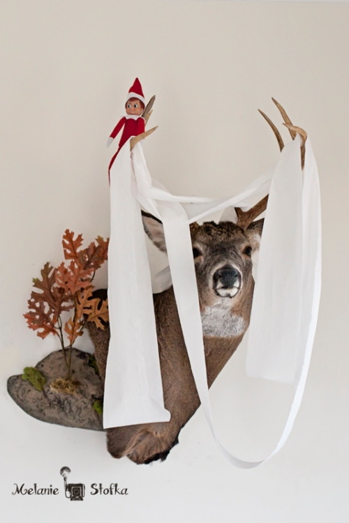 Love Bug thought that Daddy's deer head could use a little redecorating ;)
