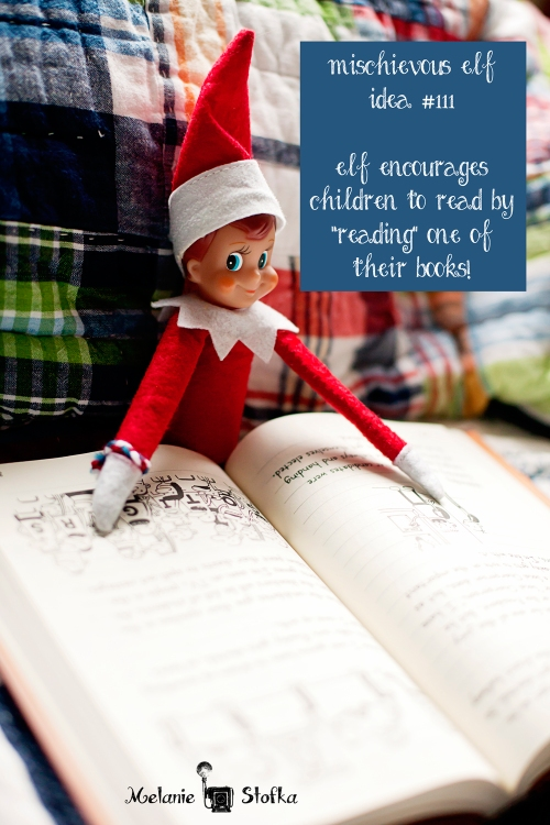 Elf on the Shelf found curled up with a good book!  Elf idea #111!!