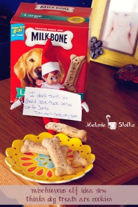 Our Elf on the Shelf mistook dog treats for cookies!